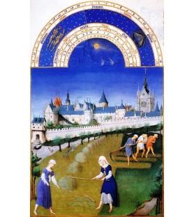 """Carte postale """"Les très riches Heures du duc de Berry"""" Juin"""