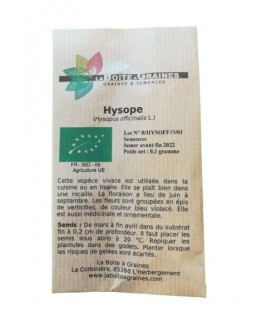 Graines d'hysope