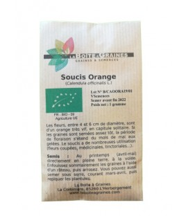 Graines de souci orange