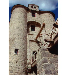 Carte postale châtelet Château Saint Mesmin