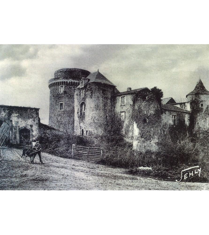 Carte postale ancienne Château de Saint Mesmin