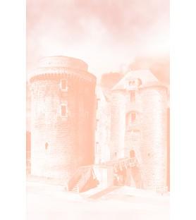 Bloc-notes Château de Saint Mesmin