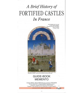 A brief history of fortified castle in France