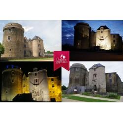 Carte postale Château de Saint Mesmin